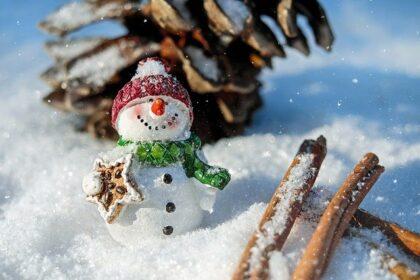 Bild Weihnachten 2020 mit Schneemann